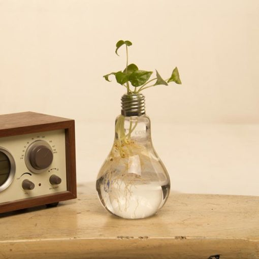 bulb shaped vases