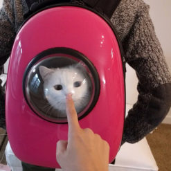 Astronaut-Capsule-Pet-Backpack-
