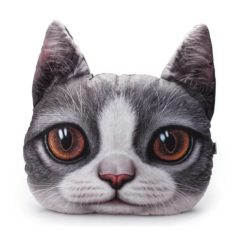 3D Cat Throw Pillow